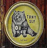 Sad Bear [Vinyl LP]