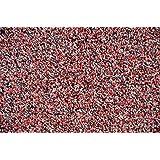 Amazon.com : 6\'x24\' - Red - Indoor/Outdoor Carpet : Area Rugs ...