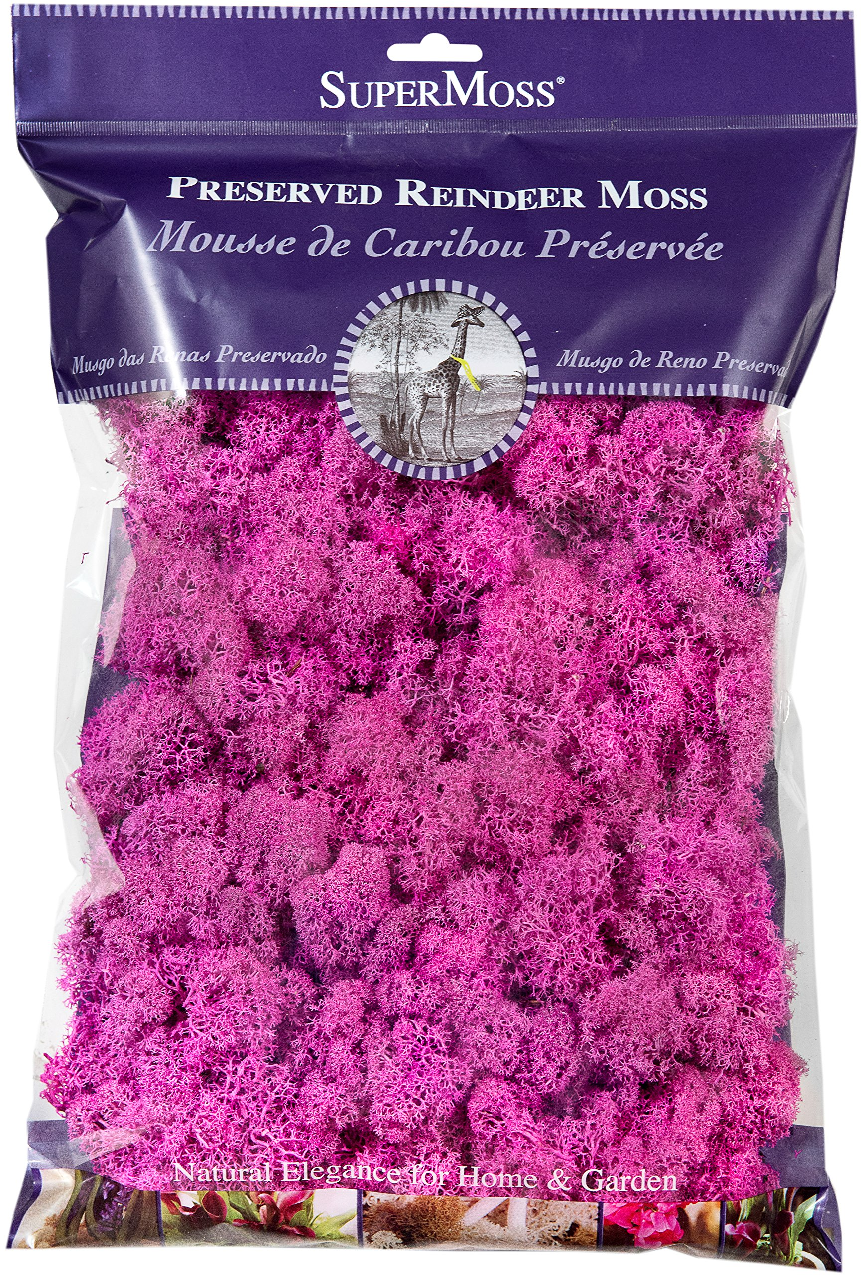 SuperMoss (23199) Reindeer Moss Preserved Bag, 8oz, Pink by Super Moss (Image #1)