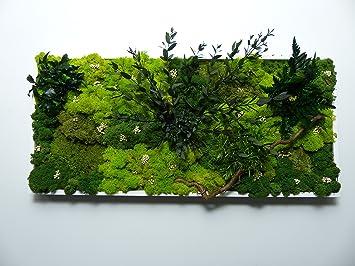 Au Détour du Monde Tableau végétal stabilisé panoramique 40x70 cm ...