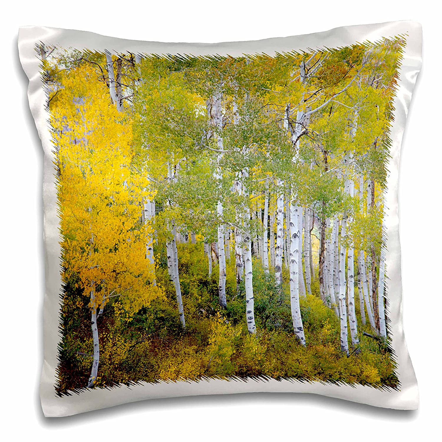 pc/_147316/_1 Utah USA-Us45 Hga0426-Howie Garber-Pillow Case Mt Nebo Wasatch Mountains 3dRose Quaking Aspen 16 by 16