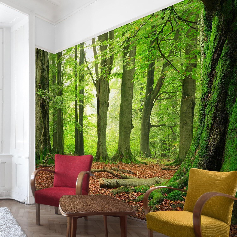Vliestapete Top Wald Tapeten, HxB    320cm x 480cm, Motiv  Birkenwand B06Y35Z9FJ Wandtattoos & Wandbilder 72fa32