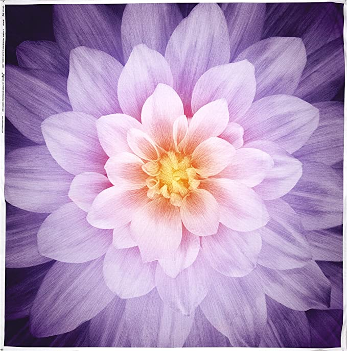 10 In Stock 44 x 44-100/% Cotton Purple and Blues Dream Big Aurora P4389 by Hoffman Digital Print Fabric Panel