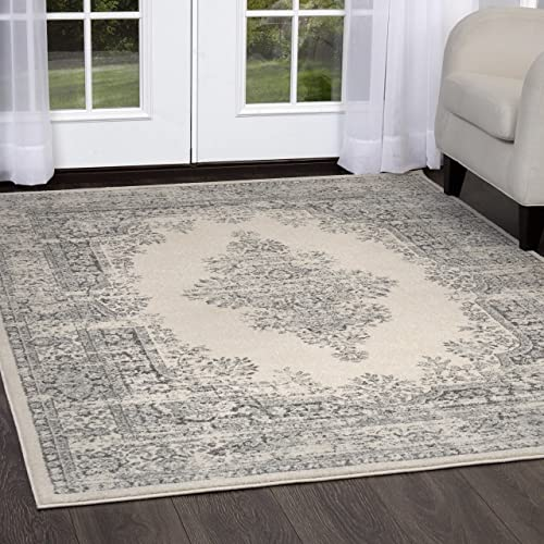 Home Dynamix Vintage Shilah Area Rug 6 6 x9 2 , Distressed Ivory Gray