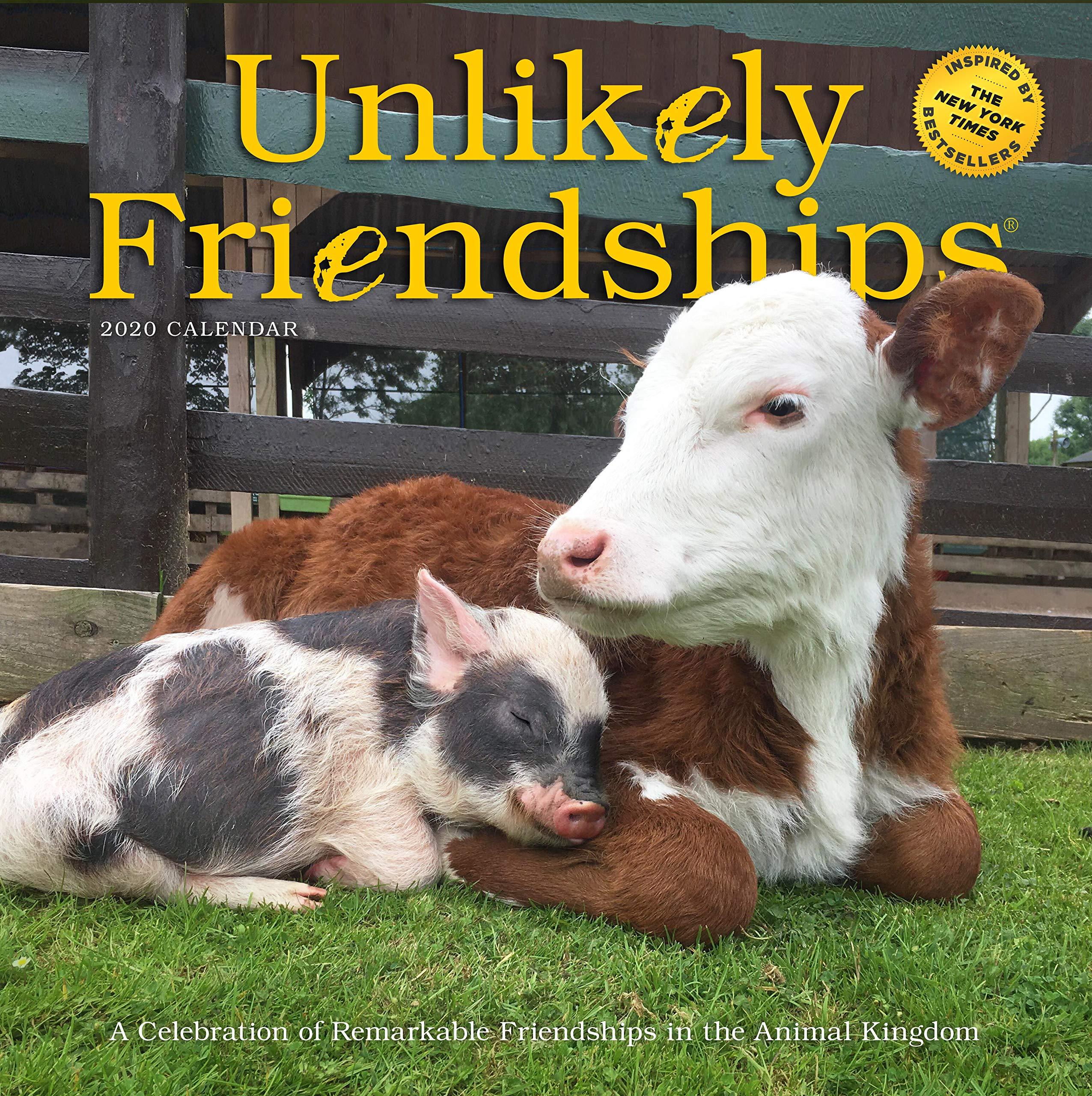 New Animal Species 2020 Unlikely Friendships Wall Calendar 2020: Workman Publishing