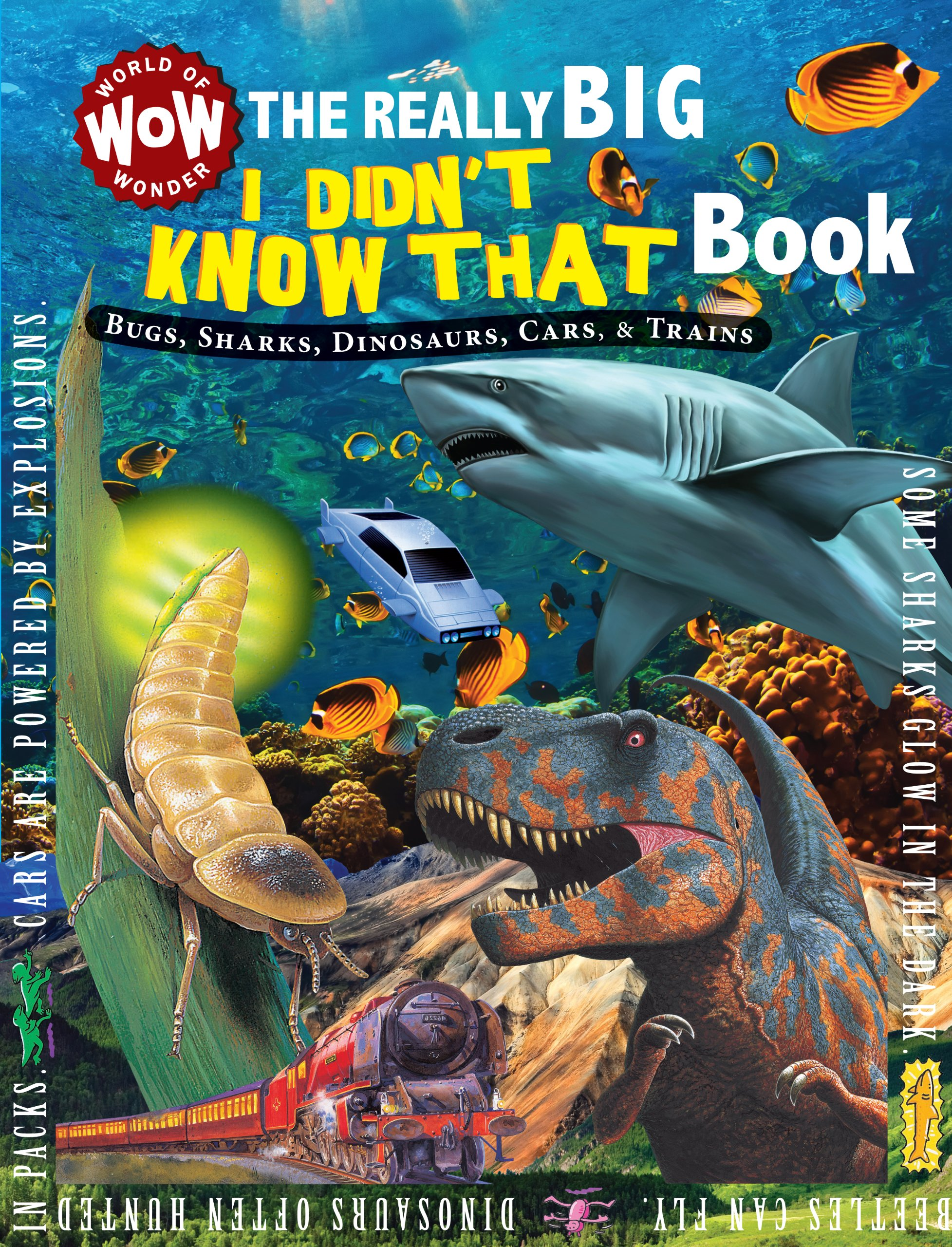 The Really Big I Didn't Know That Book: Bugs, Sharks, Dinosaurs, Cars, & Trains (World of Wonder) PDF