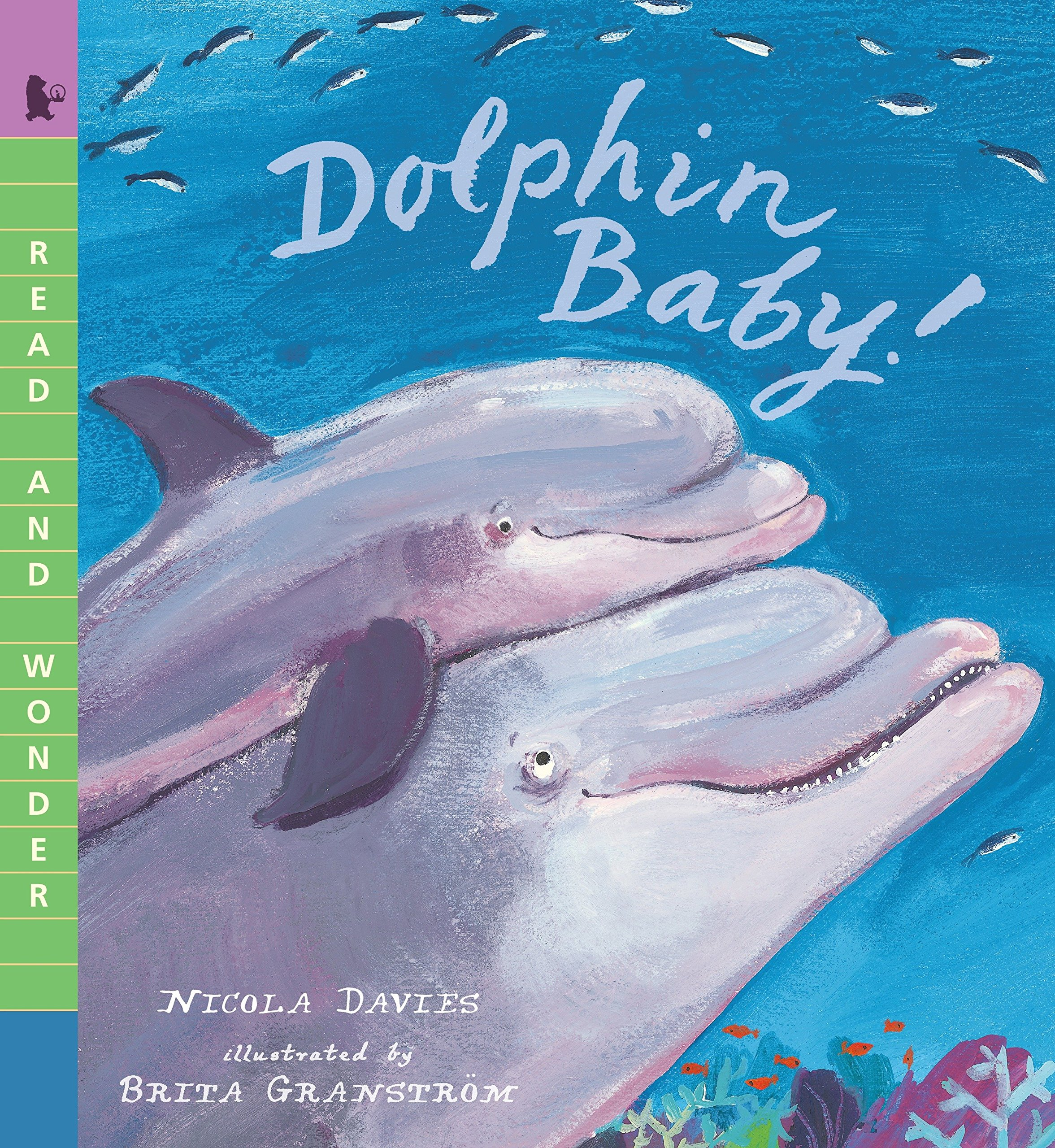Dolphin Baby! (Read and Wonder) pdf
