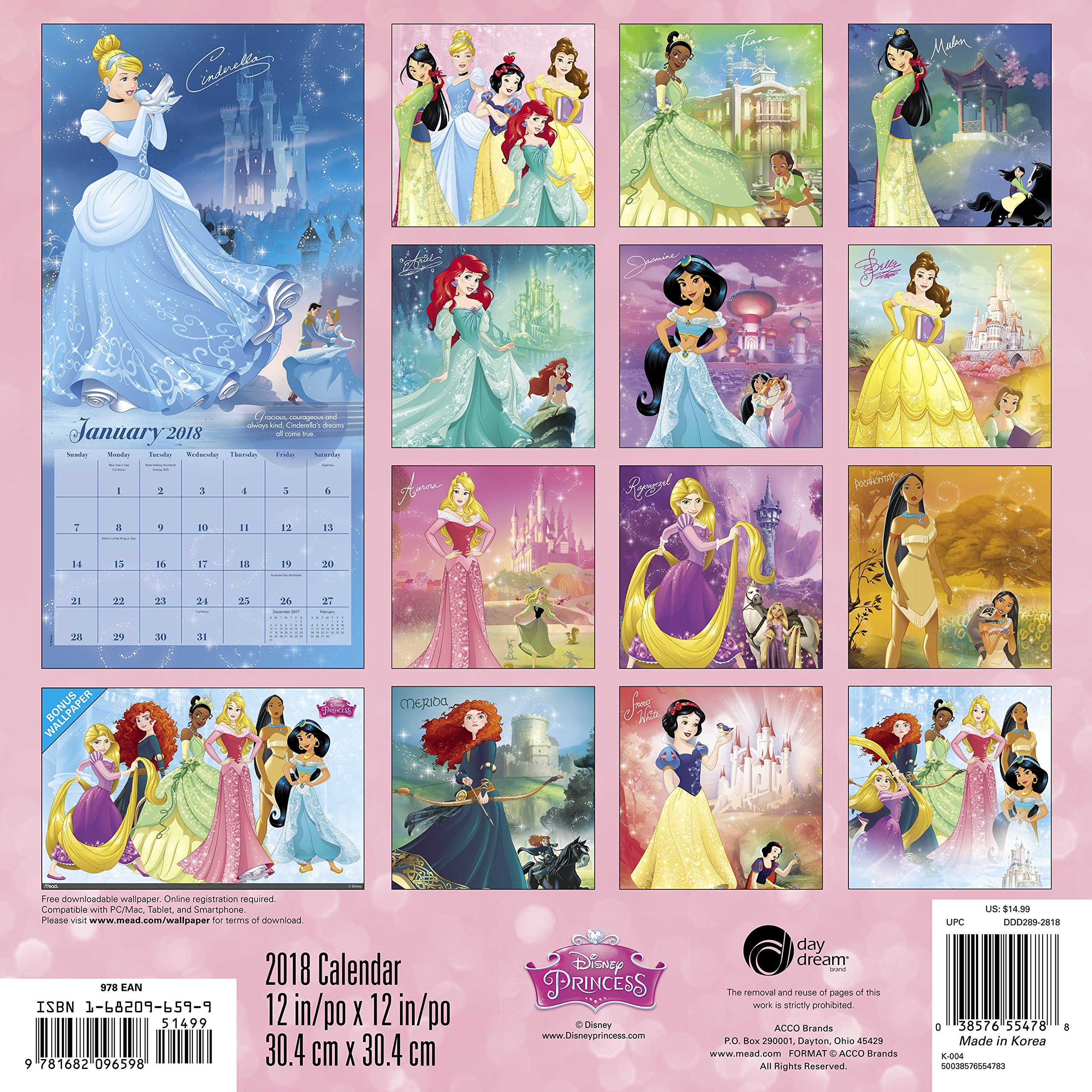 2018 Disney Princess Wall Calendar (Day Dream): Day Dream