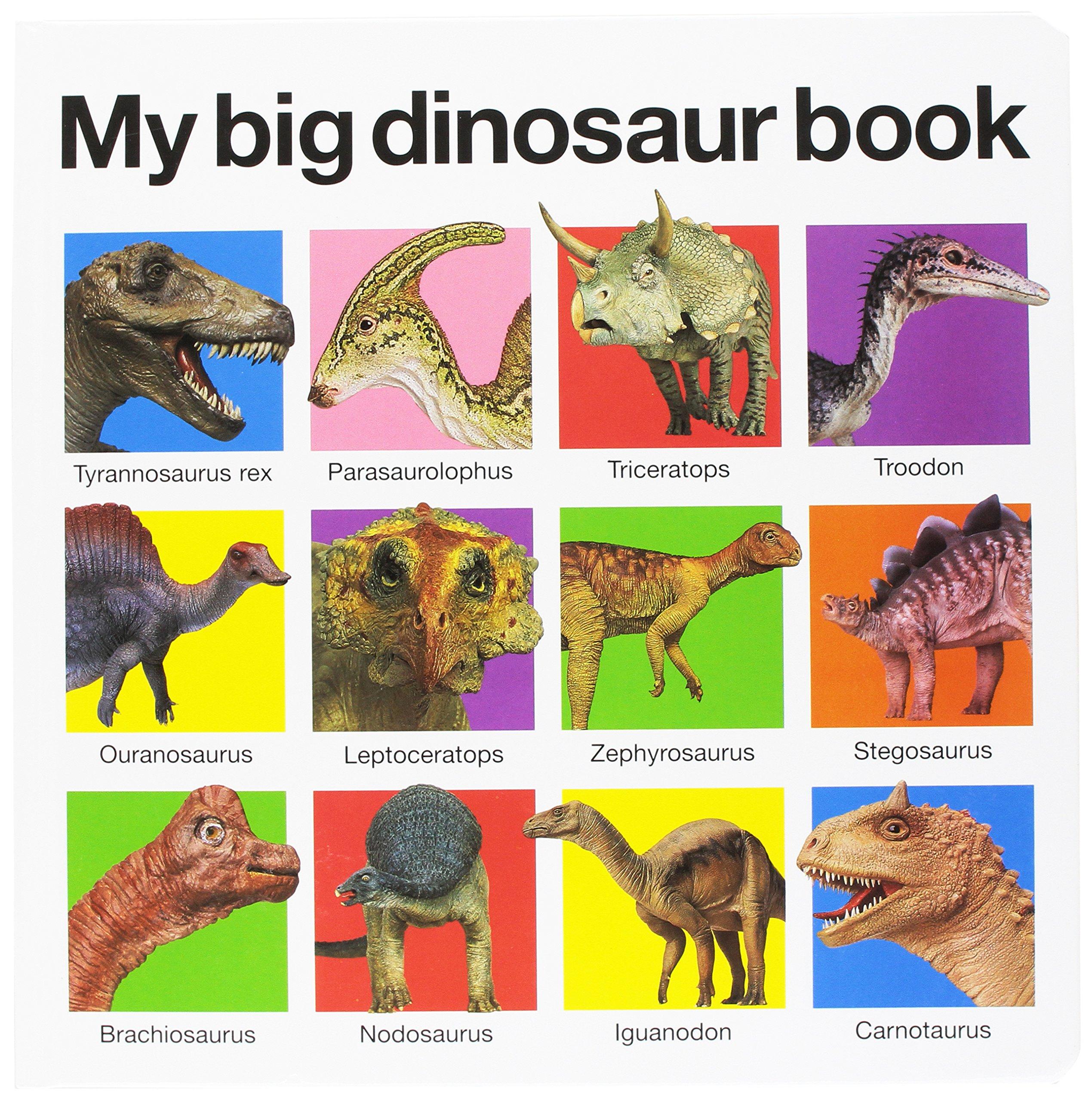 My Big Dinosaur Book Board Books Roger Priddy 9780312513061 Amazon