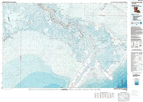 Topographic Map Mississippi.Amazon Com Yellowmaps Mississippi River Delta La Topo Map 1