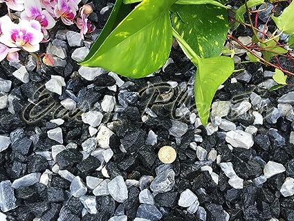 Virutas de grava piedra pizarra disuadir hierba jardín Patio ...