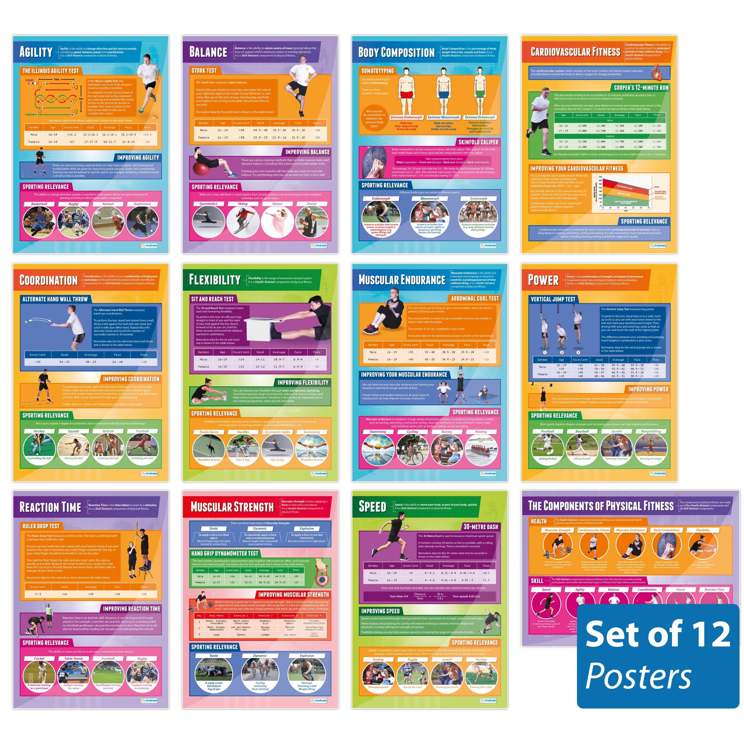 "Components of Physical Fitness - Set of 12 PE Posters | Classroom Posters for PE | Gloss Paper measuring 33"" x 23.5"" 