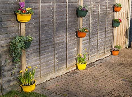Decorazione Vasi Da Giardino : Vasi curvi premium da giardino belli e colorati vasi per