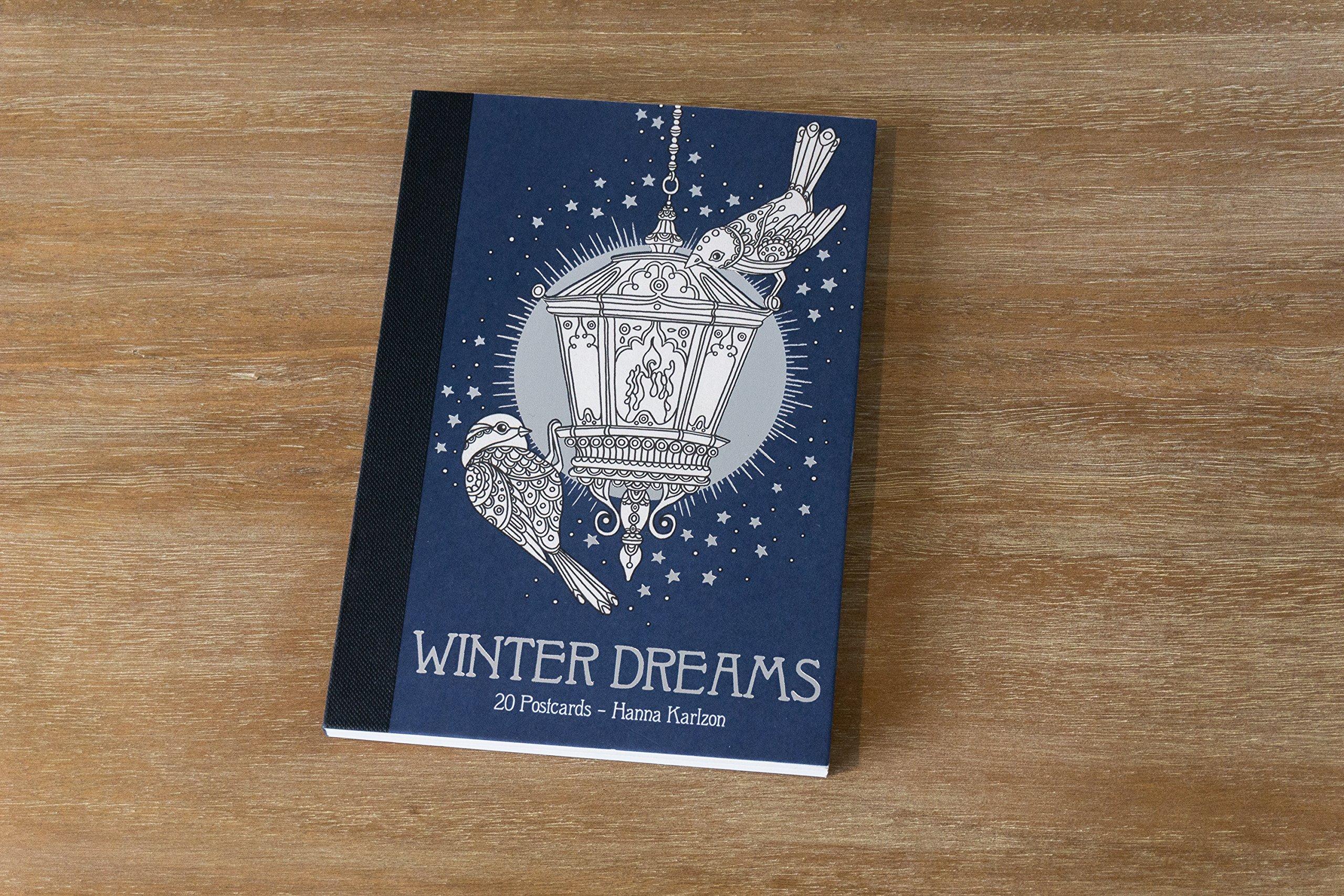 Amazon.com: Winter Dreams 20 Postcards: Originally Published in ...