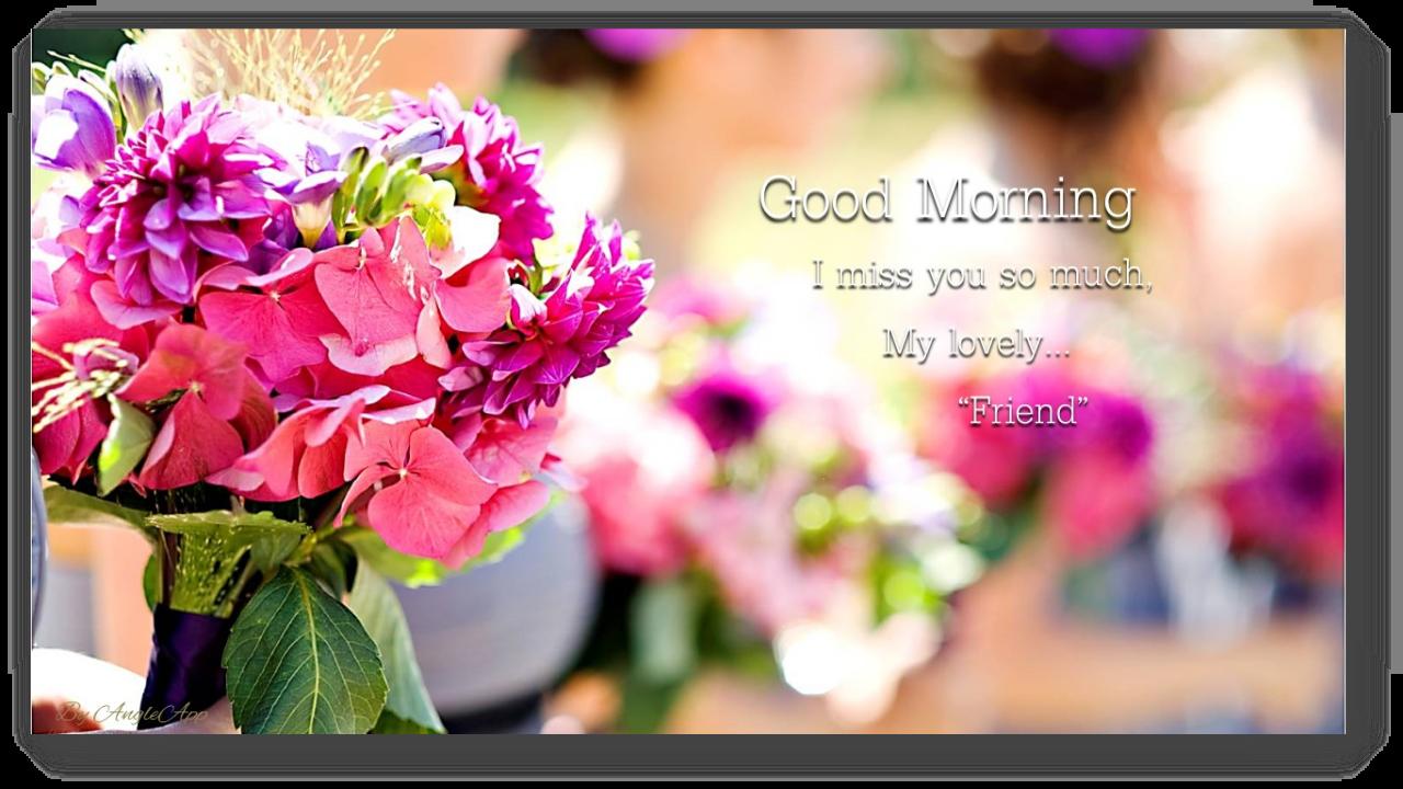 Amazon com: Good Morning & Good Night Beautiful Flower