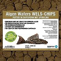 Teichpoint Algas de wafers Siluro de chips (Forro