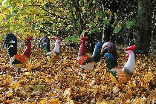Juego de 4 Metal interior exterior gallo Gallo pollo jardín decoración: Amazon.es: Jardín