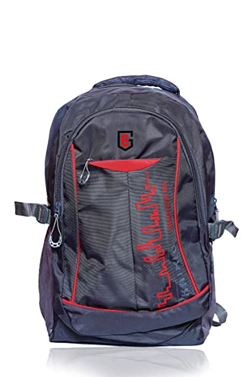 994fd1ae4d The Eg Store Grey Polyester 40Litrs College Bag: Amazon.in: Bags, Wallets &  Luggage