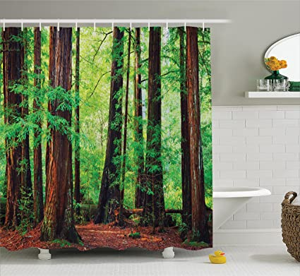 Ambesonne Tree Shower Curtain Woodland Decor Redwood Trees Northwest Rain Forest Tropical Scenic Wild Nature