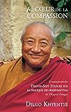 Au coeur de la compassion: Commentaire des Trente-Sept Stances sur la pratique des bodhisattvas