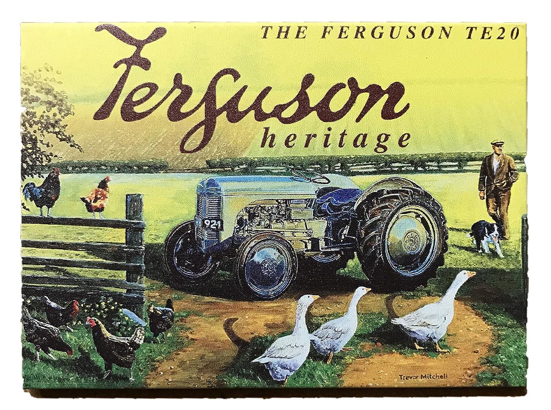 Retro Kühlschrank Zapfsäule : Harrington marley metall magnet motiv: ferguson te20 plaque garage