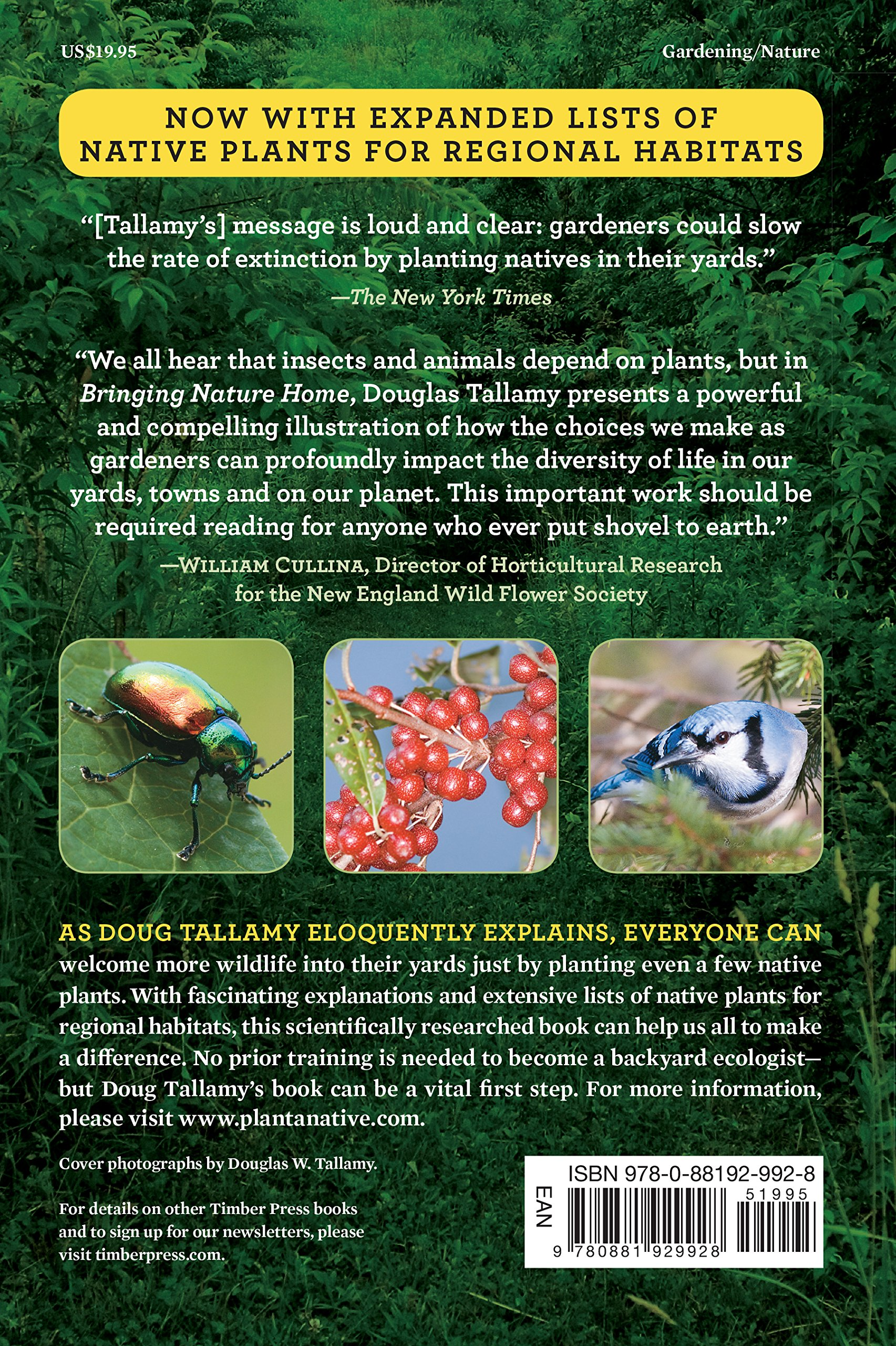 Best ideas about Plant Cell on Pinterest   Nature pattern
