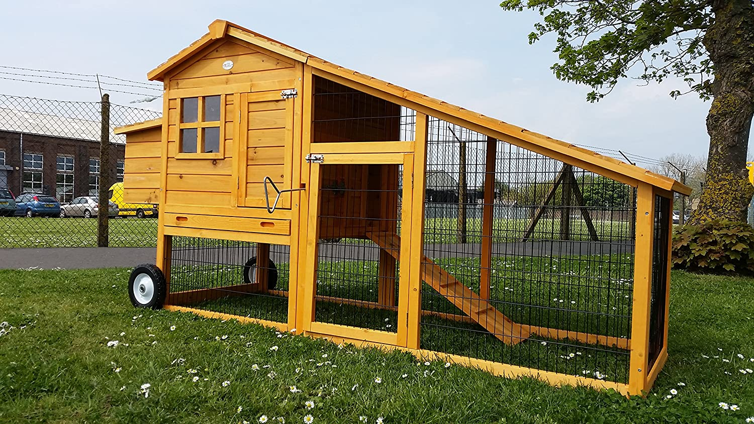 Large Eggshell Kingston Portable 7ft 100% Fox Proof 3mm Welded U0026 Coated  Wire Chicken Coop