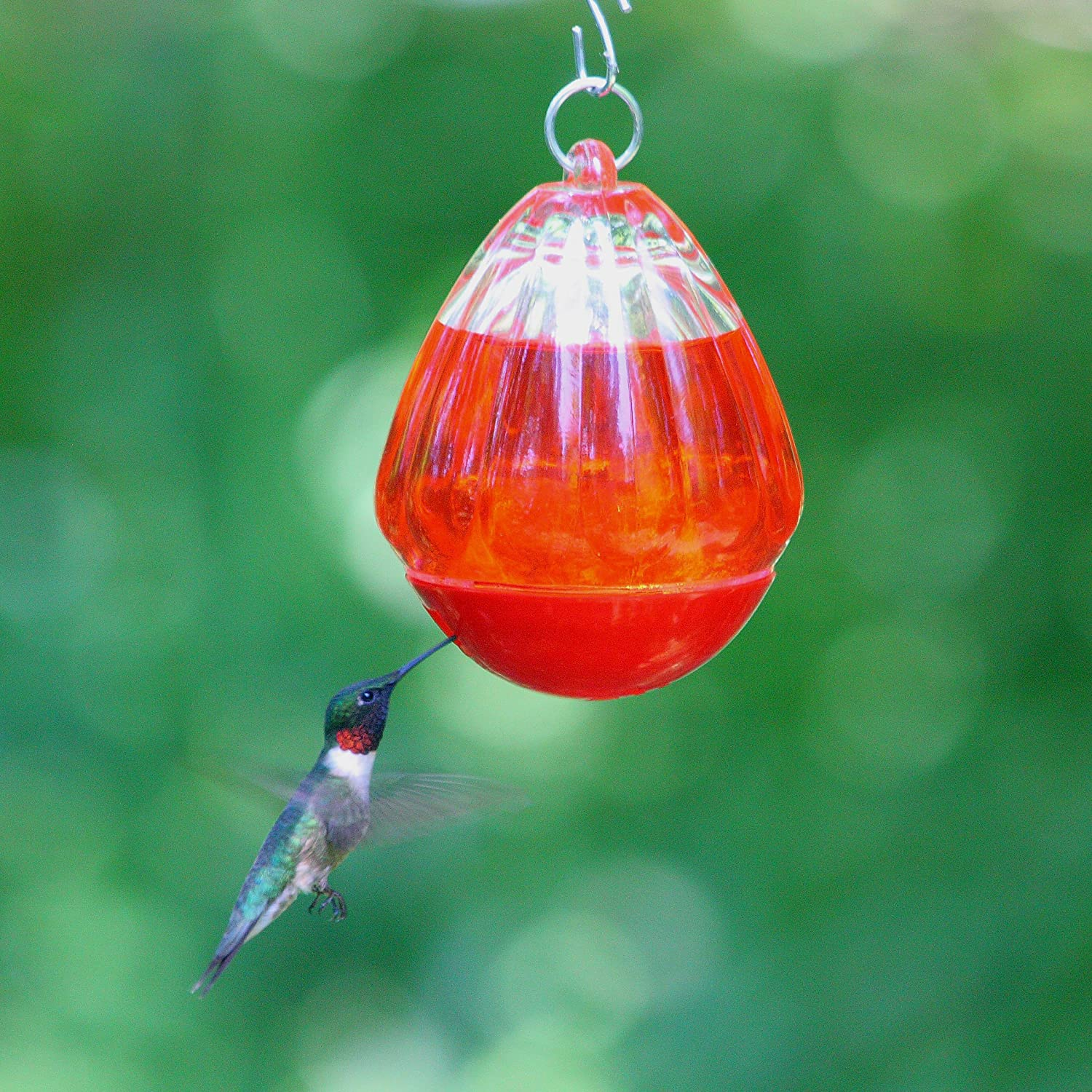 we for and nectar red glass sale finish drip with products copper love hummingbird beautiful feeders feeder white best