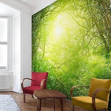 Apalis Waldtapete Vliestapete Traumzauberwald Fototapete Wald ...