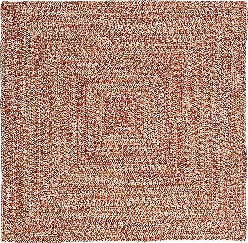 Catalina Polypropylene Braided Square Rug, 4-Feet, Fireball