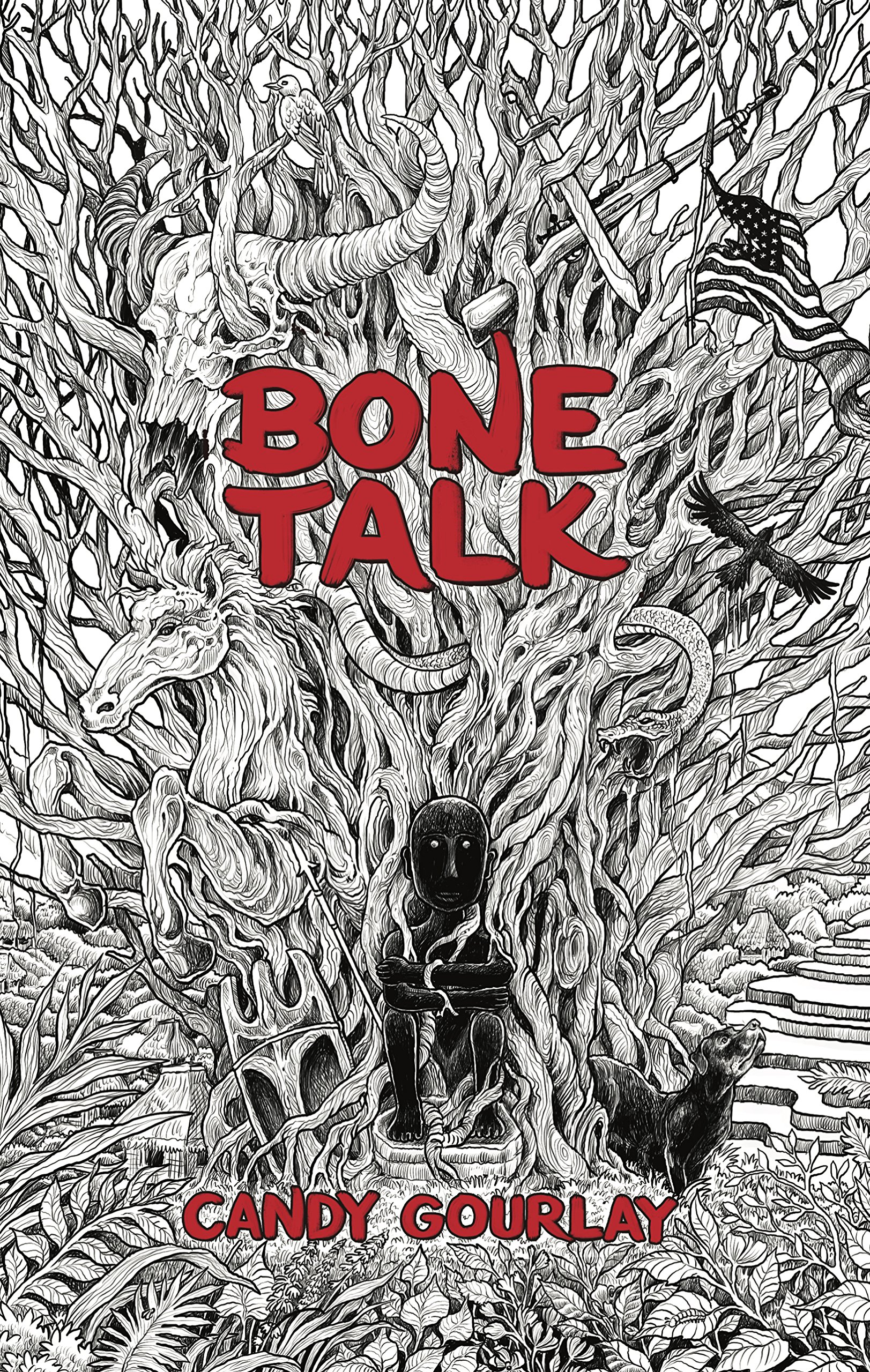 Image result for bone talk book