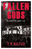 Sanctuary 12 (Fallen Gods Saga Book 1)