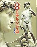 図説 ミケランジェロ (ふくろうの本)