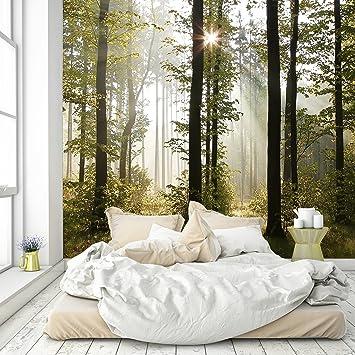 murimage Papel Pintado Bosque 274 x 254 cm Fotomurales Vista 3D Madera árboles luz del Sol Living Sala Incluye Pegamento