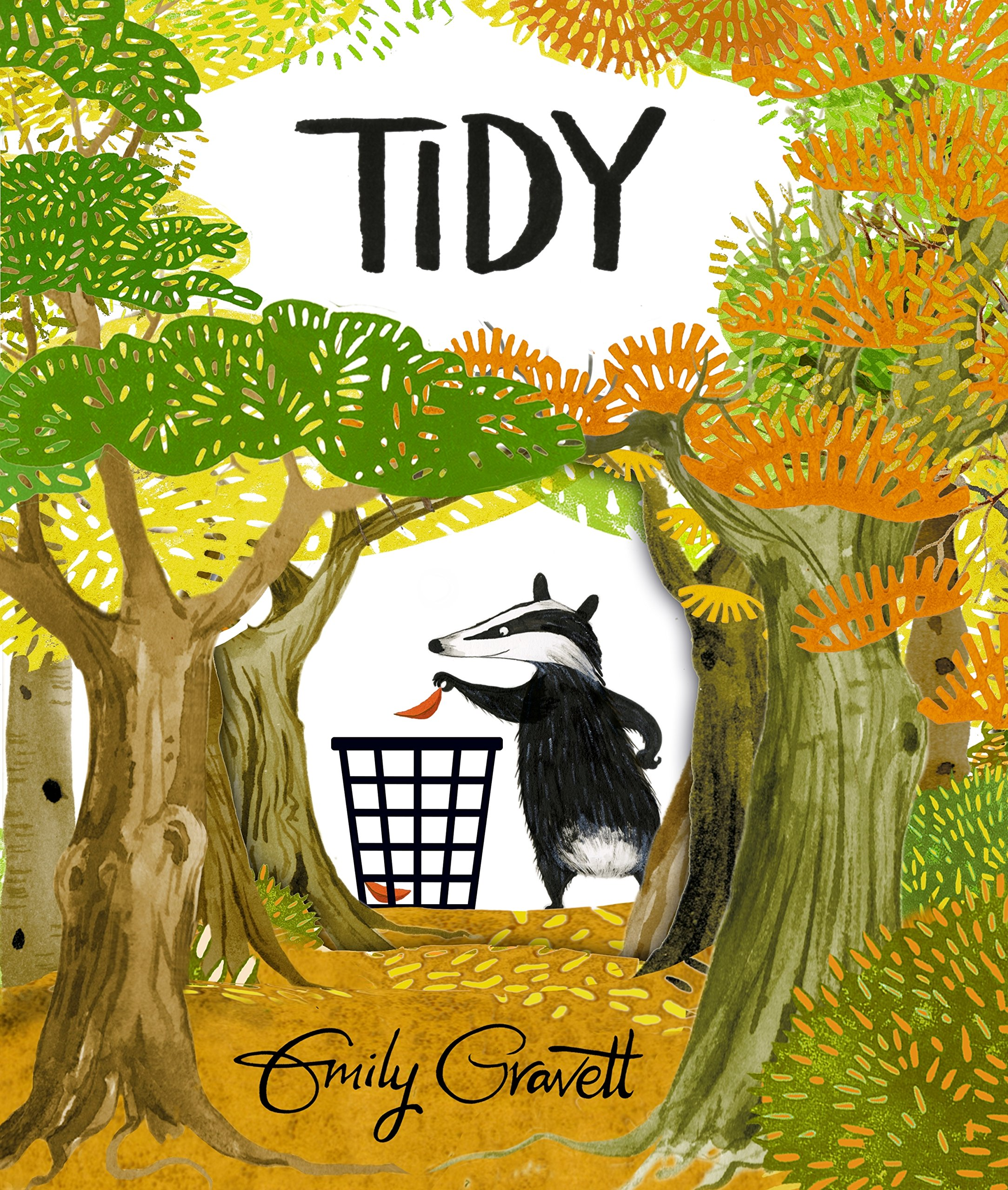 Tidy: Amazon.co.uk: Gravett, Emily: 9781447273981: Books