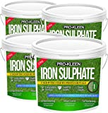 Premium Iron Sulphate Lawn Tonic/Lawn Conditioner & Moss Killer | Easily Soluble Dry Powder | Makes up to 10000L & Covers up to 10000m2 (10 KG)