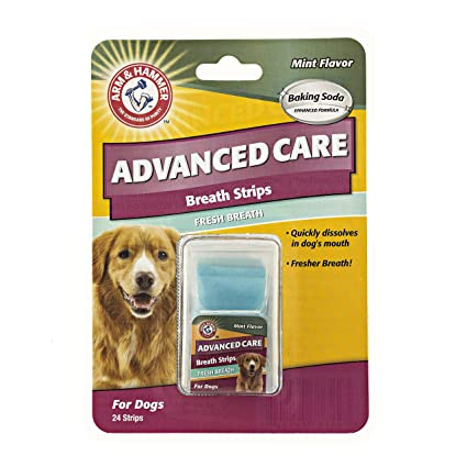 Arm & Hammer Advanced Care Fresh Breath Strips for Dogs | Fresh Dog Breath  Without Brushing | Dog Dental Care Solutions