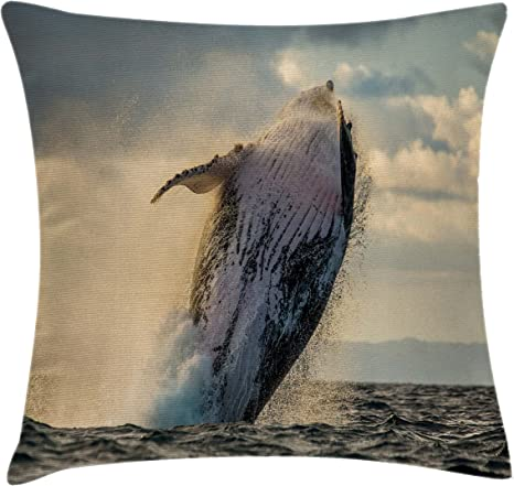 Amazon Com Ambesonne Whale Throw Pillow Cushion Cover Humpback Whale Jumping In The Sea Island Wildlife Exotic Marine Fauna Image Decorative Square Accent Pillow Case 24 X 24 Blue Grey Cream Home