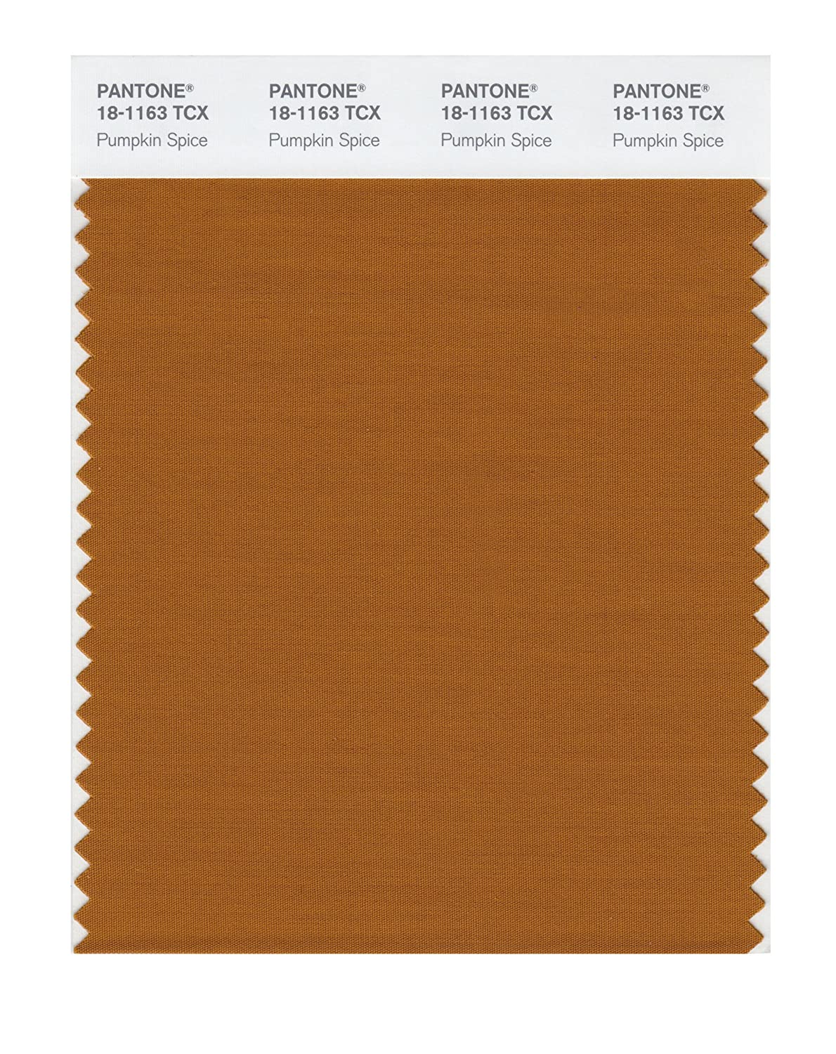 Pantone 18-1163 TCX Smart Color Swatch Card, Pumpkin Spice - House Paint -  Amazon.com