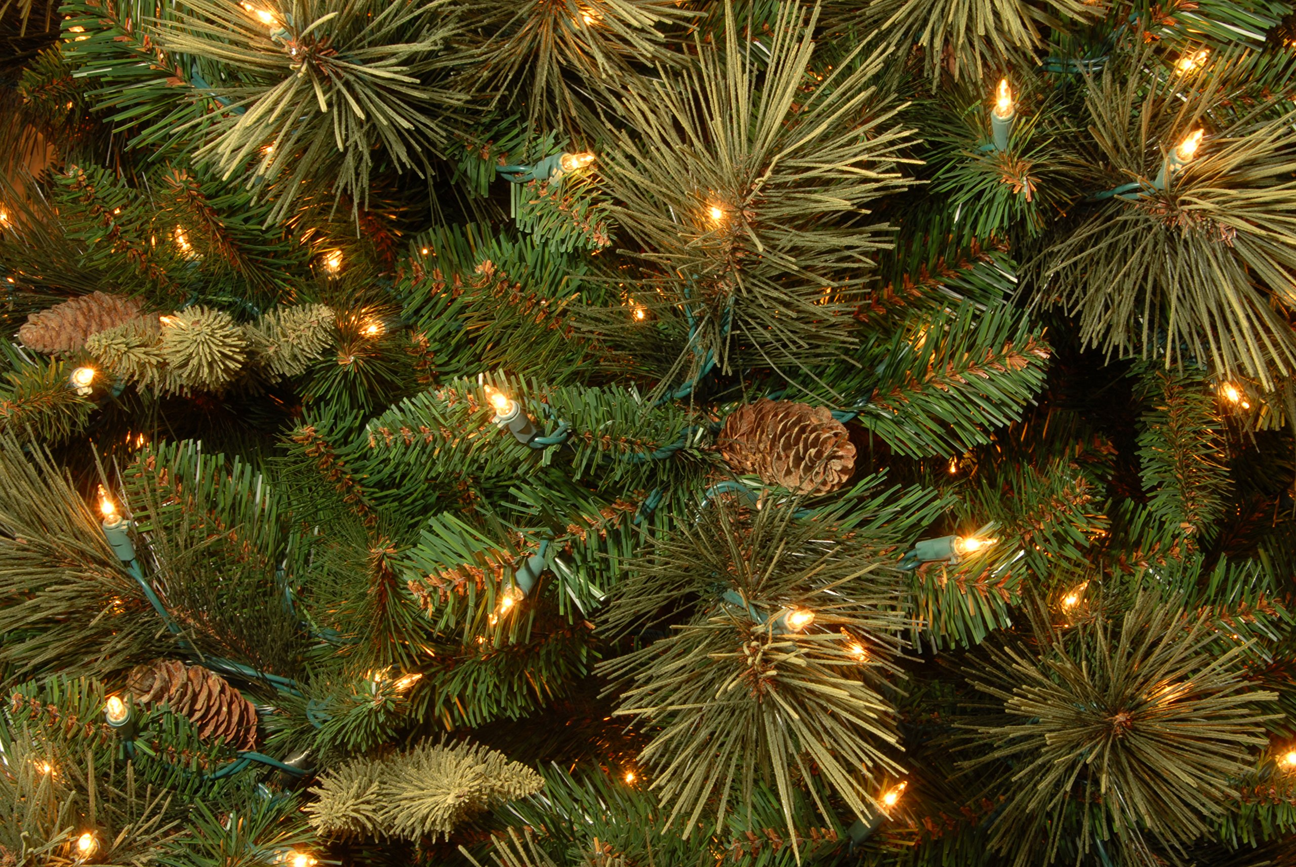 National Tree 7.5 Foot Carolina Pine Tree with Flocked Cones and 750 Clear Lights, Hinged (CAP3-306-75) by National Tree Company (Image #1)
