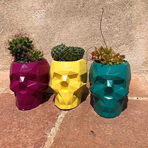 2 Pack de Porta maceta de concreto/Geometry Concret Planter Pot. NO INCLUYE PLANTA