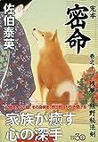 完本 密命 巻之十一 残夢 熊野秘法剣 (祥伝社文庫)