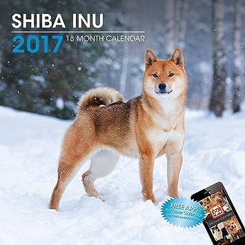 Calendrier 2017 SHIBA INU