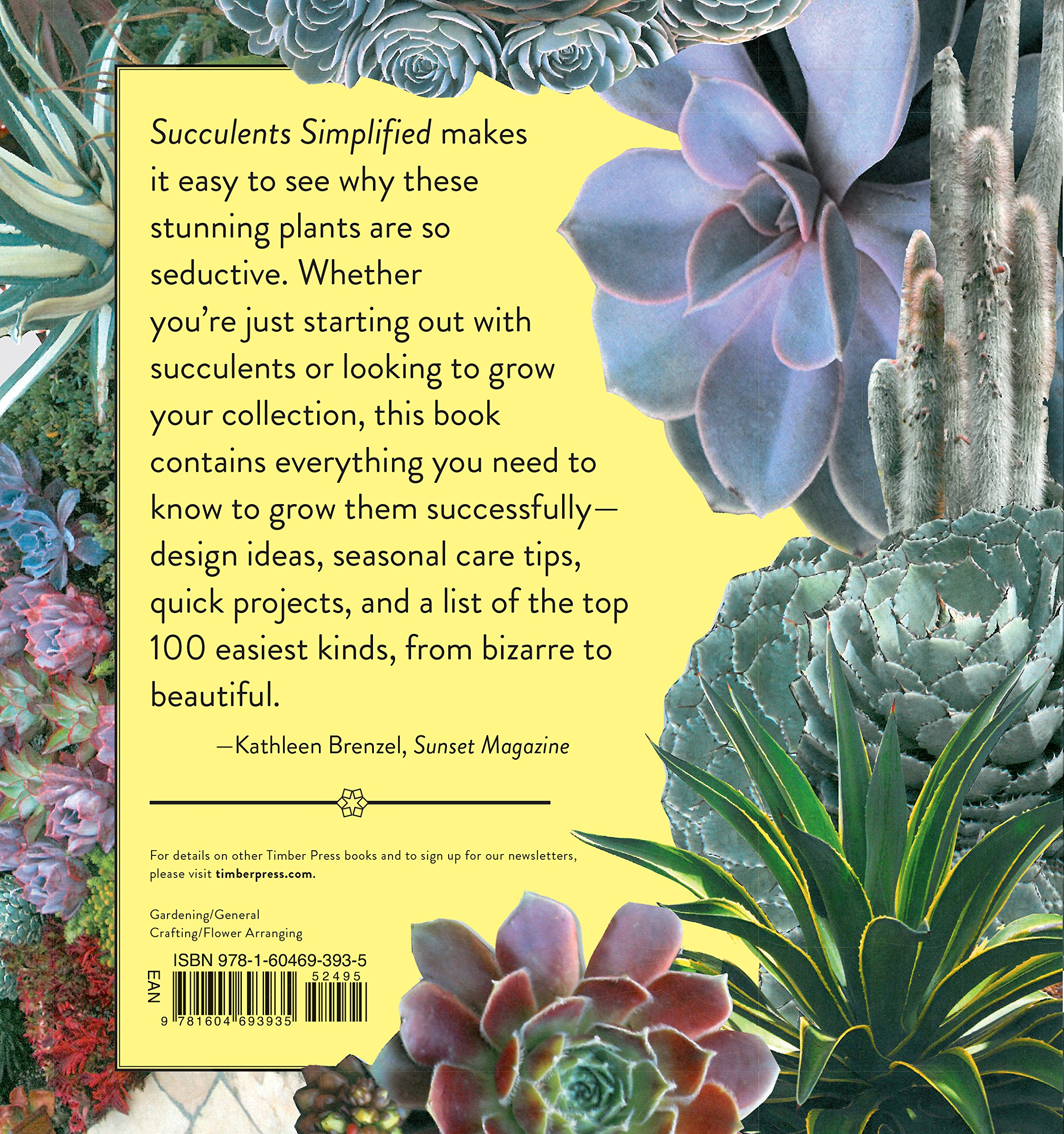 succulents simplified growing designing and crafting with 100