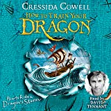How to Ride a Dragon's Storm: How to Train Your Dragon, Book 7