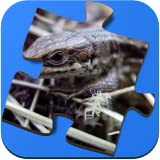 Super Jigsaws Bugs and Creatures [Download]