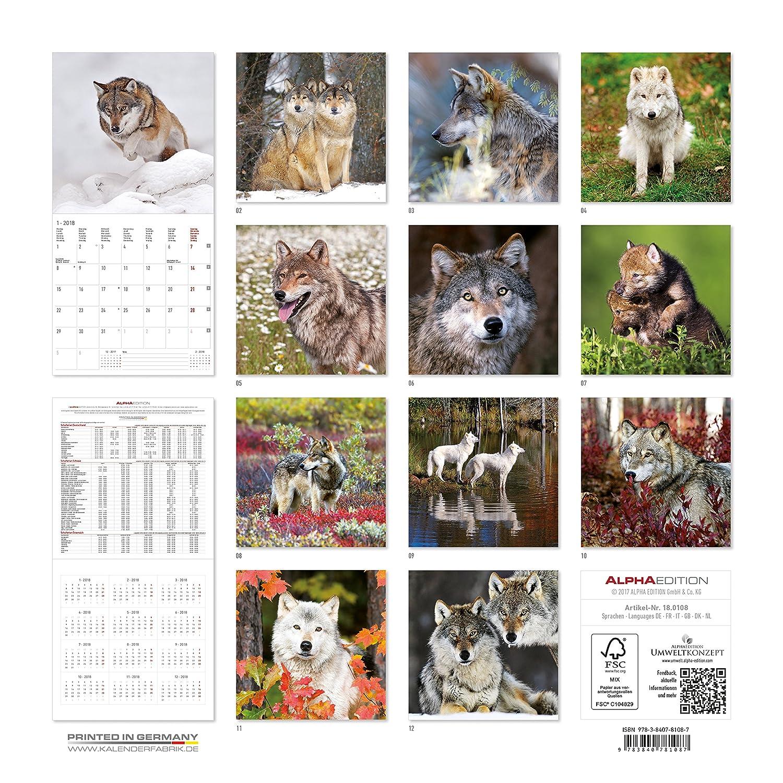 "Calendario da muro ""Lupi"" 2018 30x30 cm Alpha Edition 18.0108"
