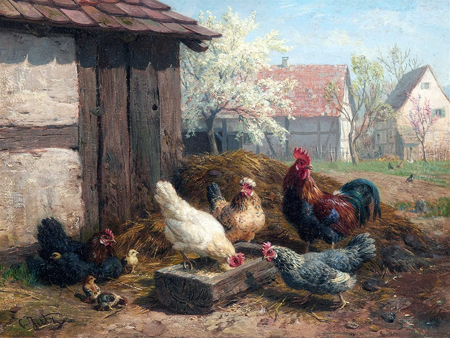 - Rooster Spring Chicken Farm By Carl Jutz Accent Tile Mural Kitchen