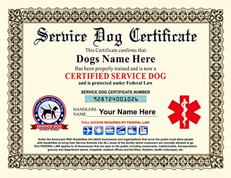 .com : service dog certificate - customizable with dogs ...