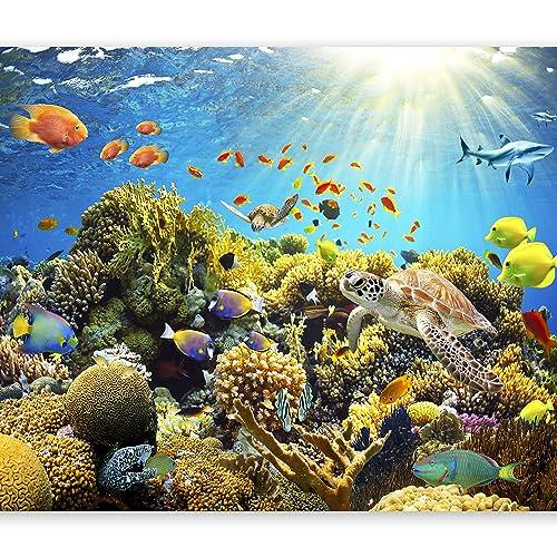 Fish Wallpaper: Amazon.co.uk